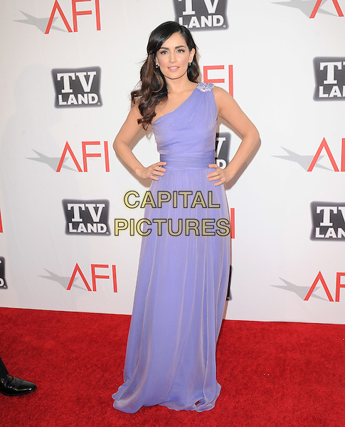 Ana De Le Requera.at TV Land's 2011 AFI Lifetime AChievement Award Honoring Morgan Freeman held at Sony Picture Studios in Culver City, California, USA, .June 9th 2011..full length hands on hips long maxi dress one shoulder purple beaded .CAP/RKE/DVS.©DVS/RockinExposures/Capital Pictures.