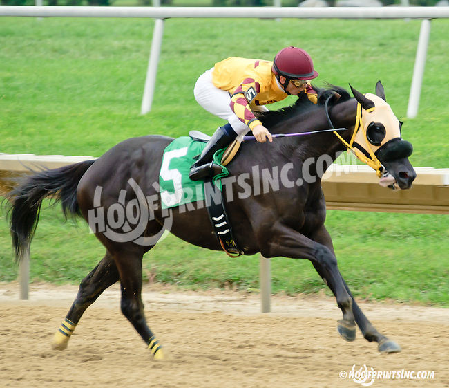 Satch winning at Delaware Park on 9/18/14