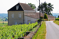 The Chateau Pavie Decesse on a private road Saint Emilion Bordeaux Gironde Aquitaine France