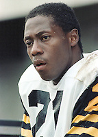 Rufus Crawford HamiltonTiger Cats. Copyright photograph Scott Grant
