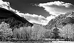 Black and white image of Moraine Park in Rocky Mountain National Park, CO