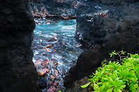 Cove waves from Waiananappa Trail. Maui, Hawaii