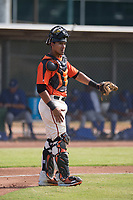 San Francisco Giants catcher Ricardo Genoves (15) during an Instructional League game against the Kansas City Royals at the Giants Training Complex on October 17, 2017 in Scottsdale, Arizona. (Zachary Lucy/Four Seam Images)