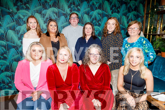 The staff of Resiliance enjoying their Christmas party in the Ashe Hotel on Saturday.<br /> Seated l to r: Michaela O'Donoghue, Cliona Whelan, Elaine Deinum and Breda Lane.<br /> Back l to r: Sarah Hunt, Shauna Dineen, Shane O'Shea, Sinead Sheehy, Aoife O'Connor and Claire Phayer.