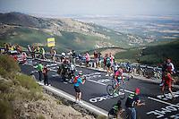 Ruben Plaza (ESP/Lampre-Merida) rode up front for more than 100km to eventually win today's stage<br /> <br /> stage 20: San Lorenzo de el Escorial - Cercedilla (176km)<br /> 2015 Vuelta à Espana
