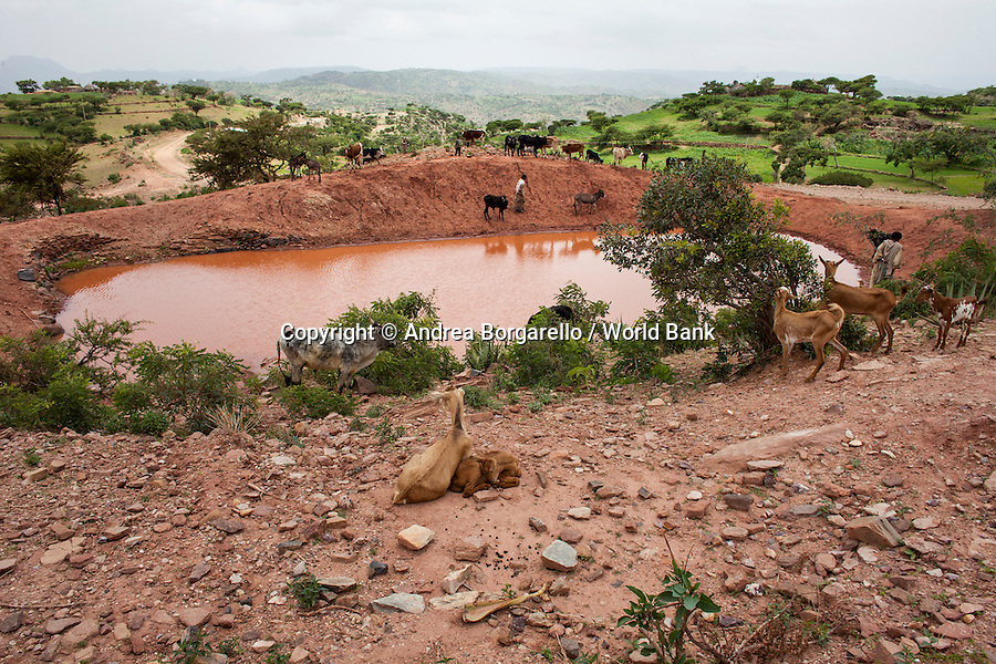 Ethiopia, Tigray region, Kola District. One of the water point built by the World Bank funded Sustainable Land Management Program.