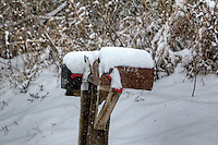 Mailboxes covered with snow during a heavy snowstorm in Northwest Arkansas.