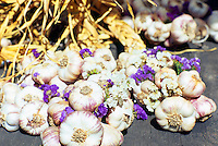 5th Annual Garlic Festival, August 2013 (hosted by The Sharing Farm) at Terra Nova Rural Park, Richmond, BC, British Columbia, Canada - Garlic Braids for sale