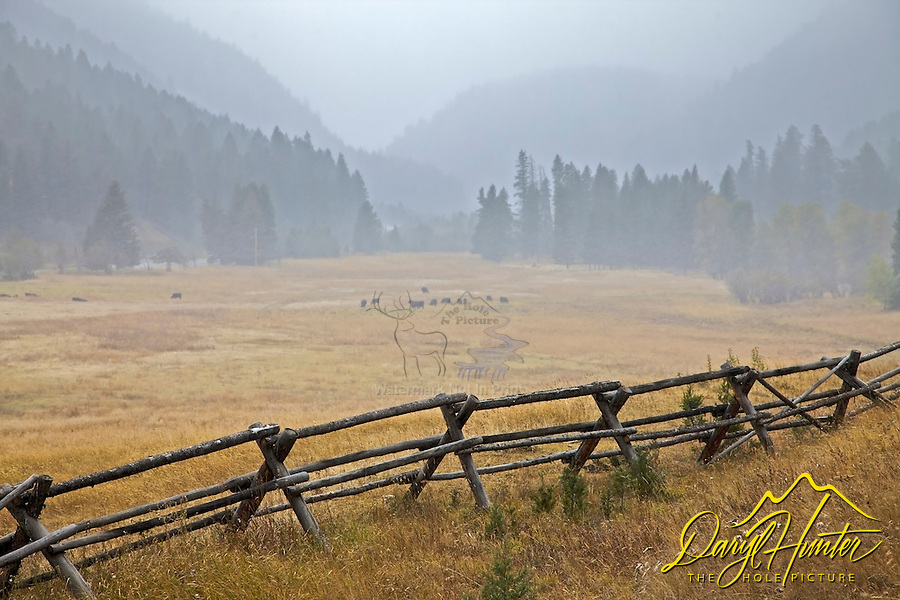 Ranch, buckrail fence, Mille Creek, snowstorm, Paradise Valley Montana