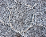 Salt polygons in playa basin at Badwater, Death Valley National Park, California