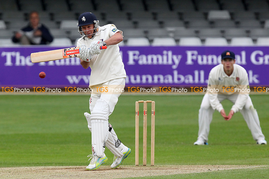Geraint Jones in batting action for Kent - Essex CCC vs Kent CCC - Pre-Season Friendly Cricket Match at the Essex County Ground, Chelmsford - 04/04/14 - MANDATORY CREDIT: Gavin Ellis/TGSPHOTO - Self billing applies where appropriate - 0845 094 6026 - contact@tgsphoto.co.uk - NO UNPAID USE