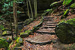 Stone steps along a hiking trail at Old Man's Cave in the Hocking Hills region of central Ohio, USA