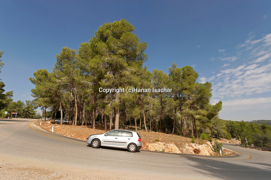Israel, Jerusalem Mountains. Route 395 Eshtaol-Ein Karem