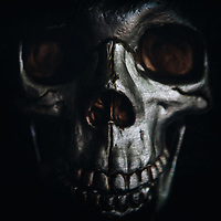 SILVER SKULL - Delivered as 1535 x 1535 pixels at 300dpi