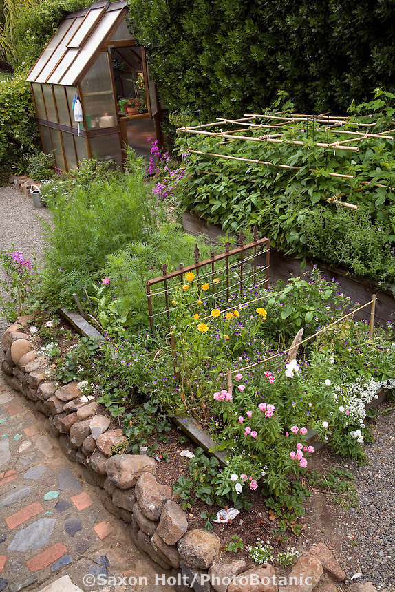 Small organic vegetable garden with mixed flowers and greenhouse