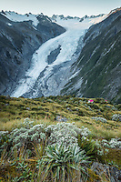Sunrise over Franz Josef Glacier and Castle Rock Hut, Westland Tai Poutini National Park, West Coast, World Heritage Area, New Zealand