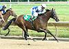 Jade's Revenge winning at Delaware Park on 6/30/10