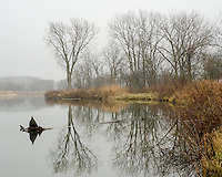 Rock Run is a small creek that fills a nearby former quarry, shown here in a Novemeber fog and mist. Rock Run Forest Preserve, Will County, Illinois