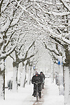 A cyclist rides a bike down a snow covered path under snowy trees in Amsterdam, the Netherlands.