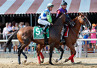 No Dozing in the post parade as Whitmore (no. 3) wins the Forego Stakes (Grade 1), Aug. 25, 2018 at the Saratoga Race Course, Saratoga Springs, NY.  Ridden by  Ricardo Santana, Jr., and trained by Ron Moquett, Whitmore finished 1 1/2 lengths in front of City of Light (No. 8).  (Bruce Dudek/Eclipse Sportswire)
