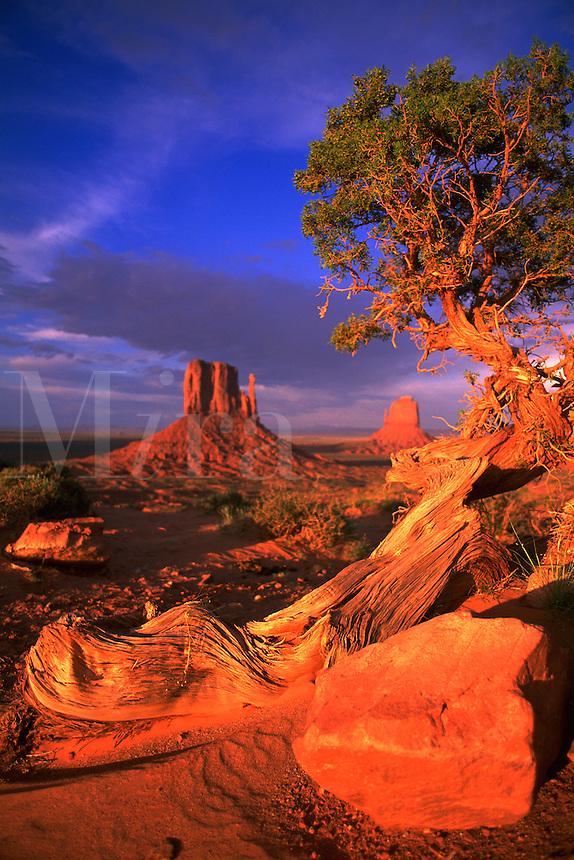 Scenic desert landscape. Monument Valley.