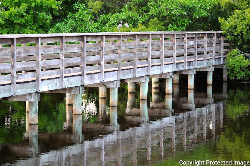Late afternoon Reflection of a bridge at Wakodahatchee Wetlands, Delray Beach, Florida.