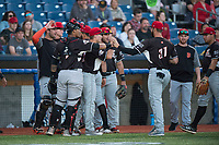 Salem-Keizer Volcanoes right fielder Dalton Combs (31) is congratulated by teammates after robbing a home run during a Northwest League game against the Hillsboro Hops at Ron Tonkin Field on September 1, 2018 in Hillsboro, Oregon. The Salem-Keizer Volcanoes defeated the Hillsboro Hops by a score of 3-1. (Zachary Lucy/Four Seam Images)