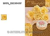 Alfredo, WEDDING, HOCHZEIT, BODA, photos+++++,BRTOCH19940F,#W#