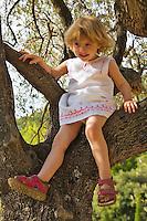 28 month old girl sits on a low branch of an olive tree. Model released.