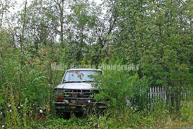 Old truck and picket fence, Dawson city,THE YUKON TERRITORY, CANADA