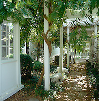 Smothered in a mature wisteria the pergola provides a long covered walkway by the side of the house