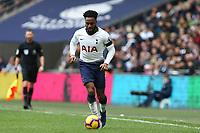 Danny Rose of Tottenham Hotspur during Tottenham Hotspur vs Leicester City, Premier League Football at Wembley Stadium on 10th February 2019