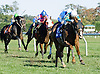 Dr. Skip winning at Delaware Park on 10/13/12