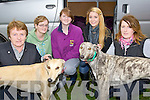 GREYHOUNDS; Attending the Kilflynn Coursing on Saturday L-r: Mary O'Regan(Causeway), Grace Flynn,Ailing Flynn and Megan Hearst (Tarbert) and Colette O'Regan (Causeway).............