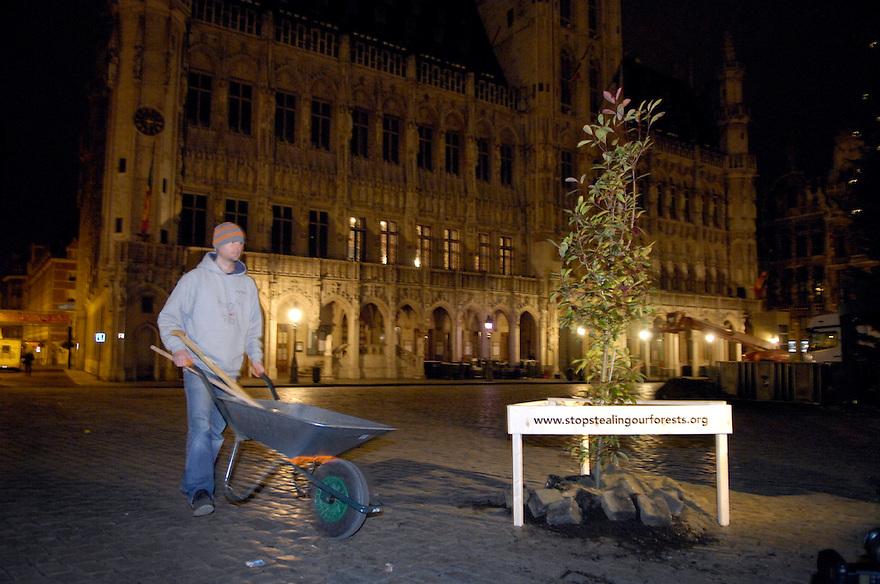 Belgie, Brussel, 28 nov 2007.Actievoerders van Milieudefensie hebben vanmorgen vroeg om 5 uur op diverse plekken in Brussel illegaal bomen geplant. Dit als protest tegen het feit dat er nog altijd veel illegaal gekapt hout wordt verhandeld in Europa. ..Foto (c) Michiel Wijnbergh