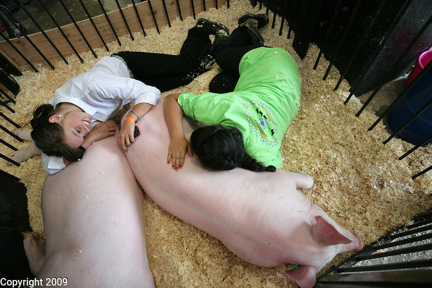 Cailey Plagerman (cq), Everson, and Tatum Garcia (cq), 15, Lynden, right, lay on their FFA York Crosses. NW Washington Fair. August 16, 2009 PHOTOS BY MERYL SCHENKER ..       ..