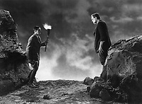 Frankenstein (1931) <br /> Colin Clive &amp; Boris Karloff<br /> *Filmstill - Editorial Use Only*<br /> CAP/KFS<br /> Image supplied by Capital Pictures