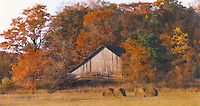 """Hay Bales in Fall""  Washington Island  Wisconsin 