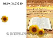 Alfredo, HOLY FAMILIES, HEILIGE FAMILIE, SAGRADA FAMÍLIA, paintings+++++,BRTOXX03339,#XR#