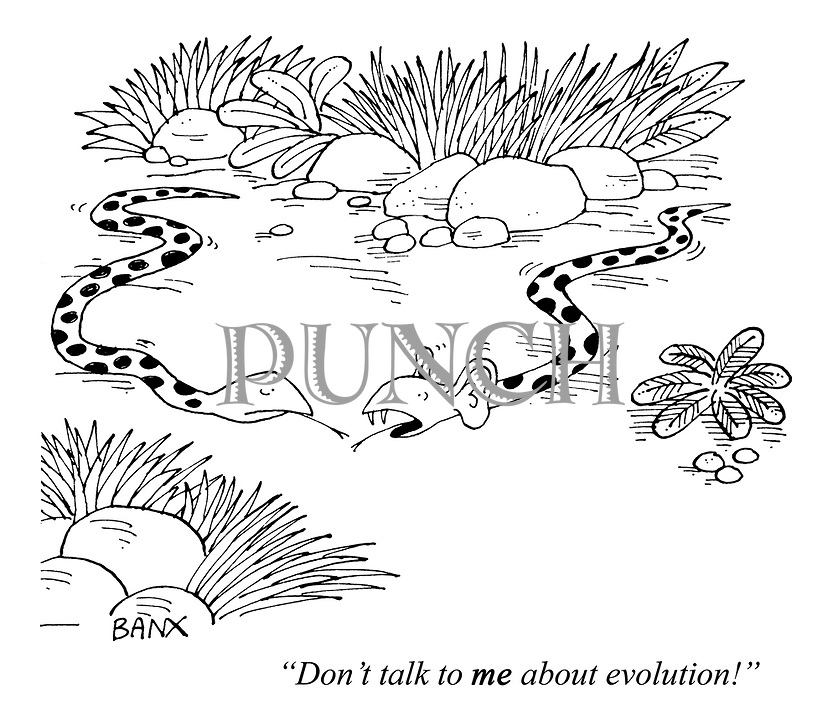 """Don't talk to ME about evolution!"""