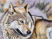 Sandi, REALISTIC ANIMALS, REALISTISCHE TIERE, ANIMALES REALISTICOS, paintings+++++plainswolf,USSN62,#a#, EVERYDAY ,wolf,wolves ,wolf,wolves ,puzzles