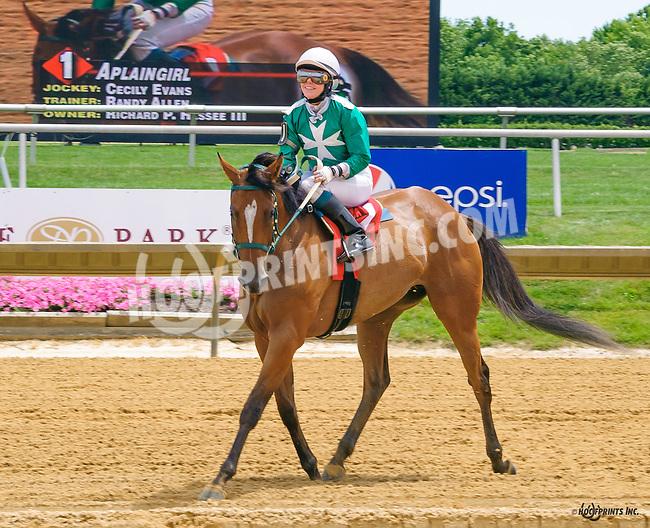 Aplaingirl winning at Delaware Park on 7/2/16