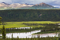 Headwaters of the nenana river and the Alaska Range mountains.