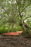 USA, Hawaii, The Big Island, a boat sits in the jungle in the Waipio Valley