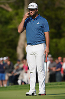Jon Rahm (ESP) on the 13th green during the 1st round at the PGA Championship 2019, Beth Page Black, New York, USA. 17/05/2019.<br /> Picture Fran Caffrey / Golffile.ie<br /> <br /> All photo usage must carry mandatory copyright credit (&copy; Golffile | Fran Caffrey)