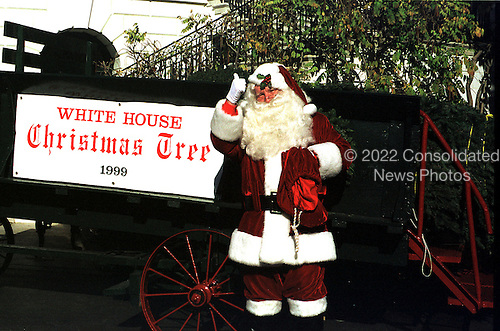 """""""Santa Claus"""" welcomes the 1999 White House Christmas Tree on December 2, 1999 in Washington, D.C..Credit: Ron Sachs / CNP"""