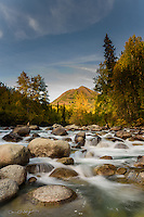 The Little Susitna River flows from the Talkeetna Range in Hatcher Pass en route to Alaska's Matanuska Susitna Valley during a gorgeous fall day.