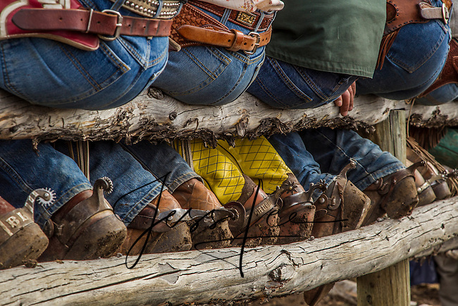 Boots and Butts,Cowboy photo, photography,pictures Cowboys and cowgirls living the western lifestyle.
