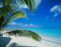 Antigua, West Indies<br /> Palm fronds extend over the white sand beach at Dickinson Bay with Corbison Point in the distance - Caribbean Islands