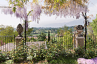 A wisteria plant in full bloom beautifully frames the wonderful view of the surrounding hills with its cascading flowers